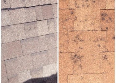 Roofing Shingles in CO Springs